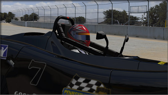 driver iRacing view