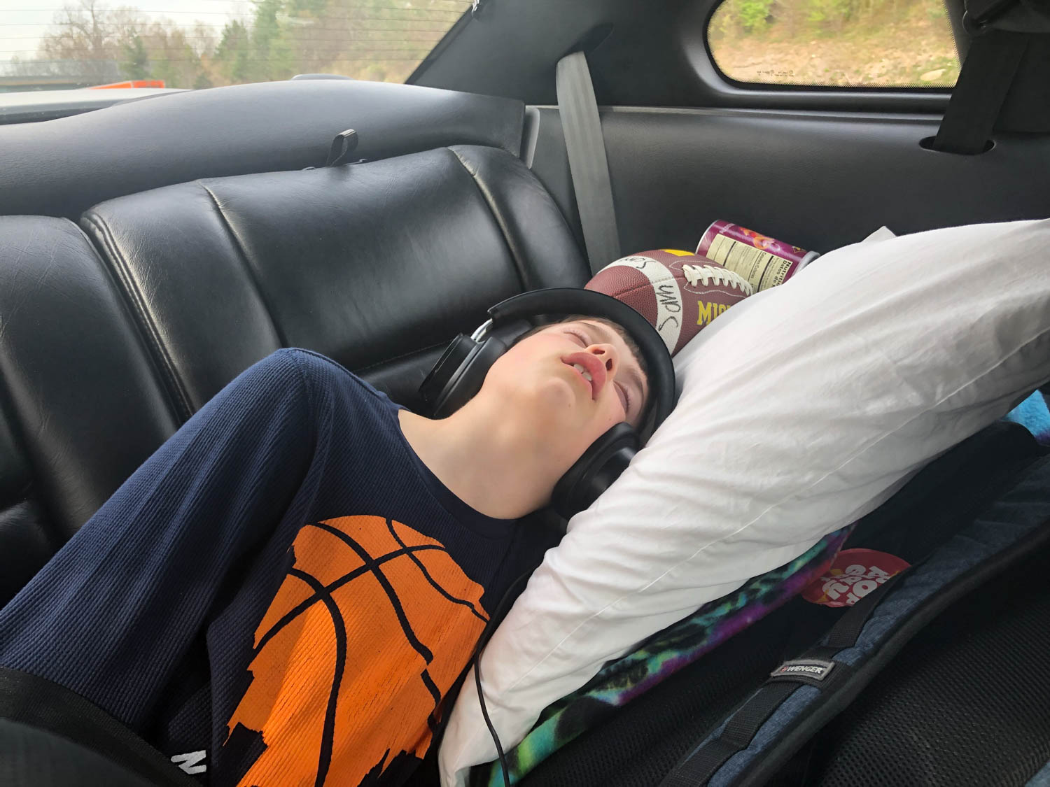 Sam asleep in the 1994 Ford Mustang Cobra