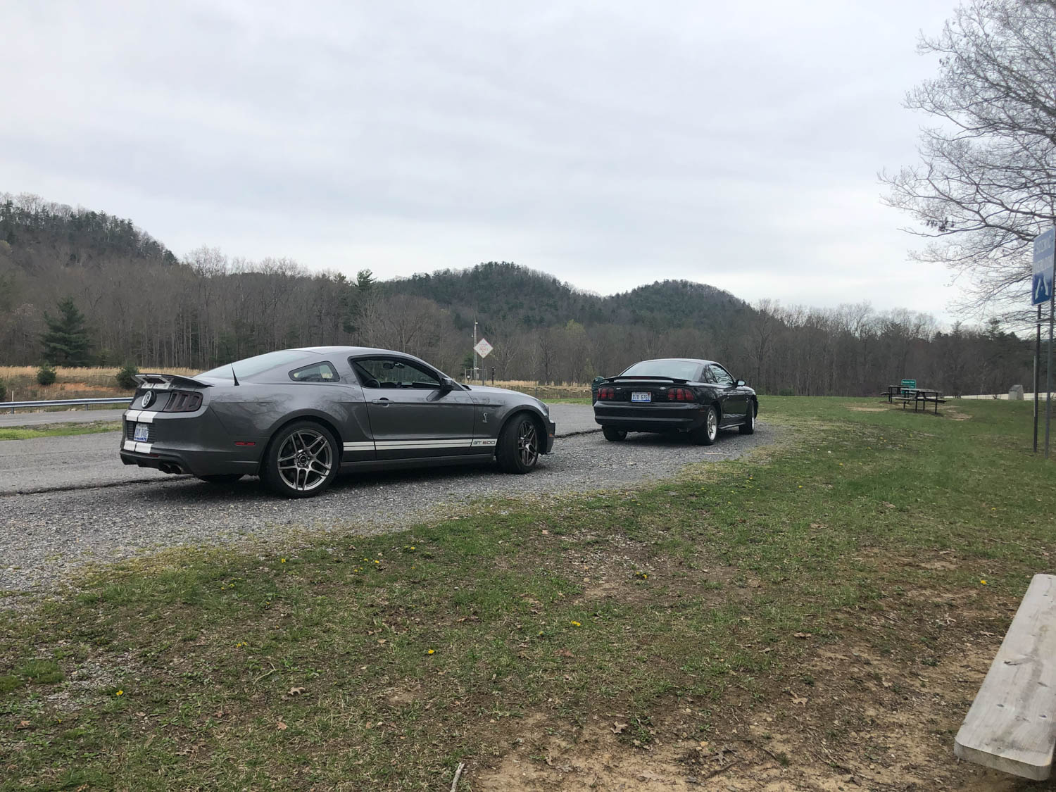 1994 Ford Mustang Cobra and 2013 Shelby GT500