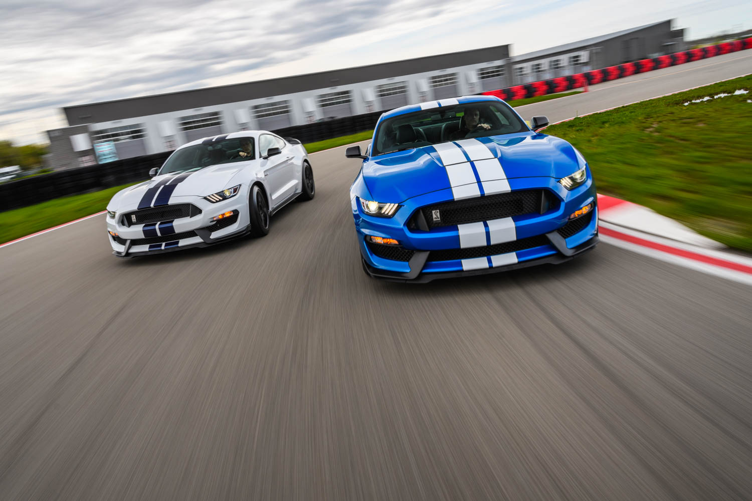 2019 Ford Mustang Shelby GT350 driving