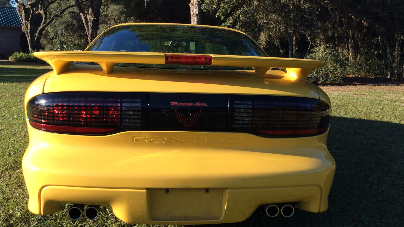 1993 Pontiac Firebird Trans Am rear