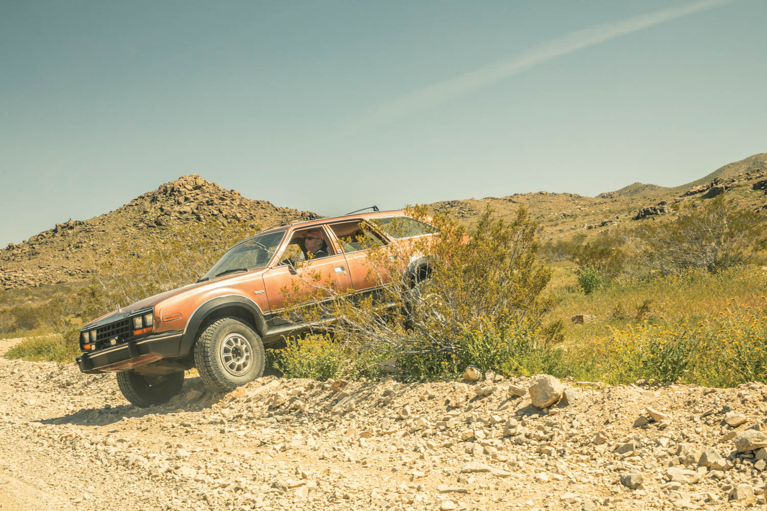 Like the ancient Aepycamelus camel (but without the fleas and spitting), the AMC Eagle proved a capable ship of the desert.