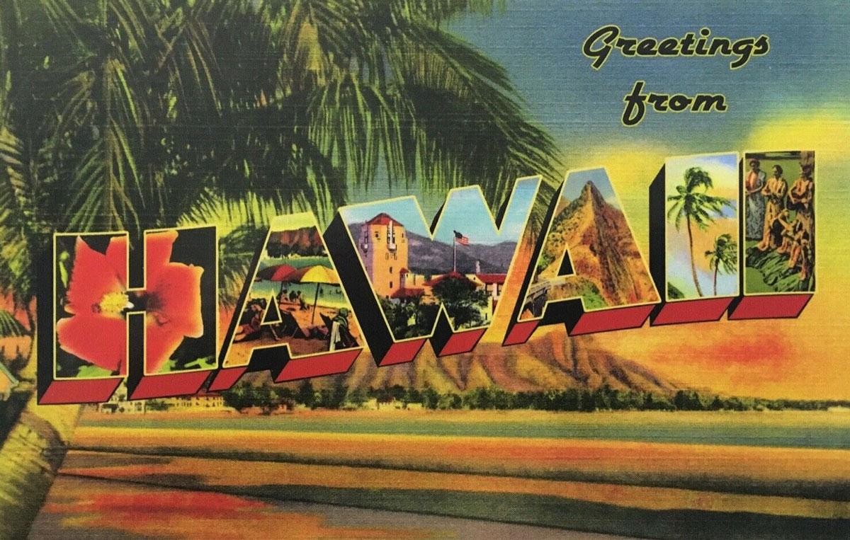Hawaii State Banner
