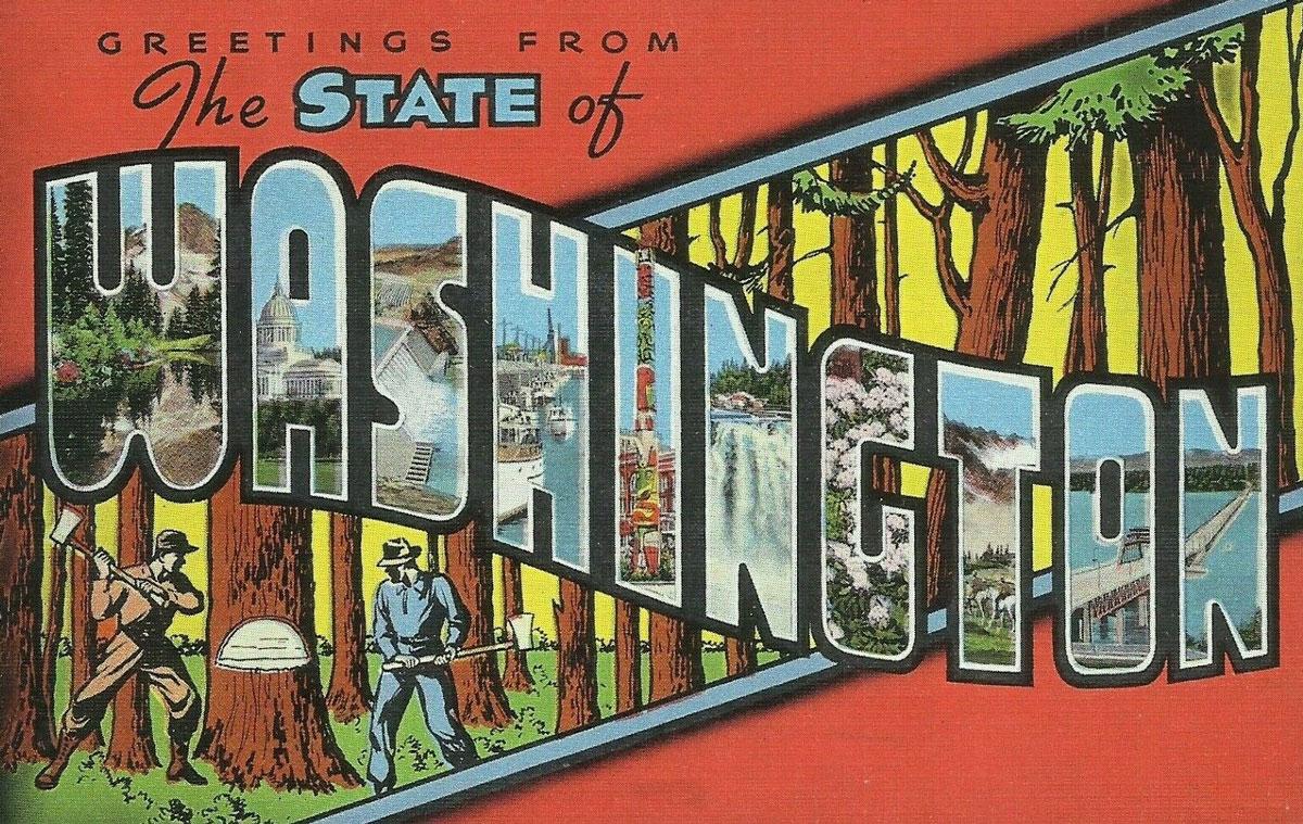 Washington State Banner