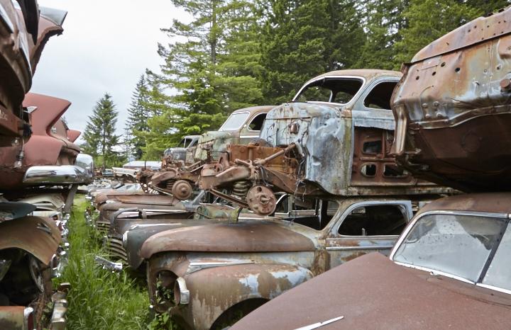 Wildcat Auto Wrecking