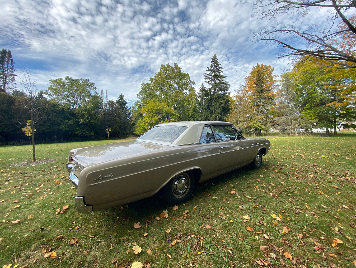 1964 Buick Special