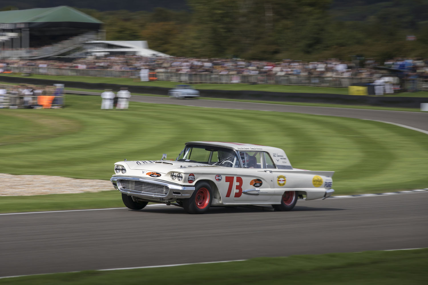 goodwood revival thunderbird racecar