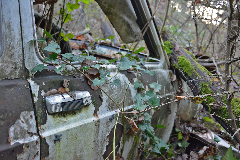 abandoned old car door close-up