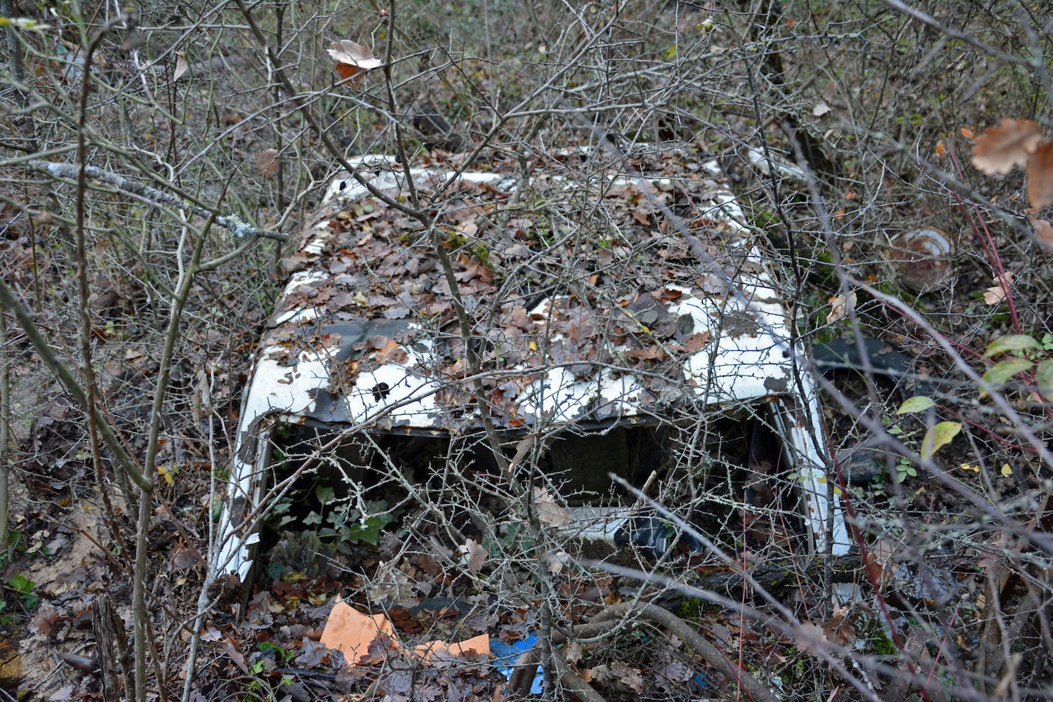 abandoned old car top