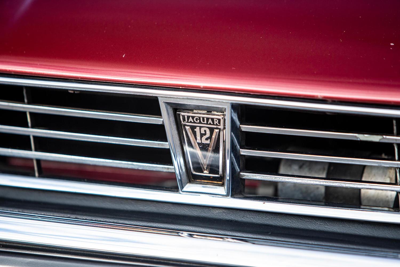 1986 Jaguar XJ-S TWR V12 HE 6.1-Litre Lynx Eventer Sports Estate front grille
